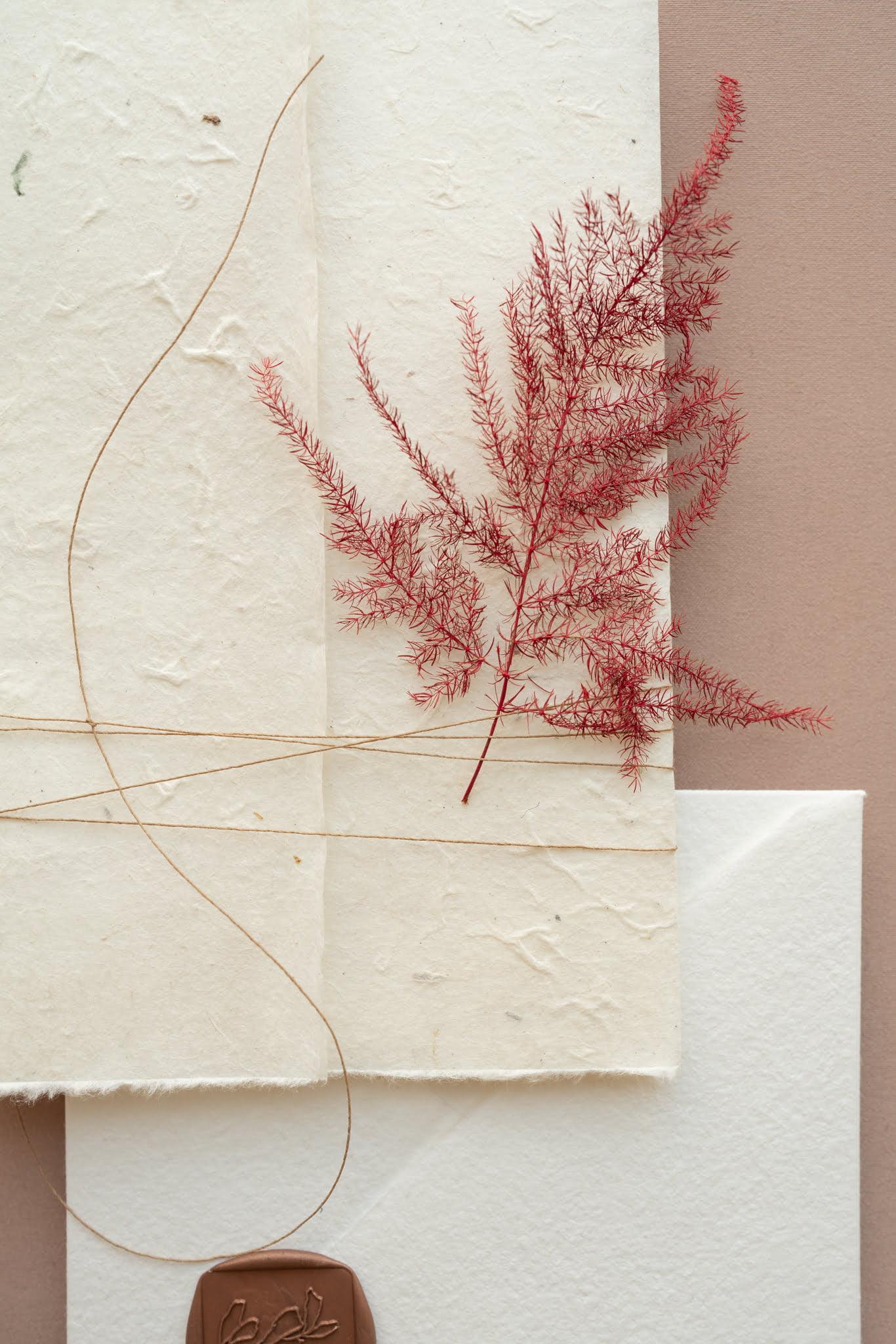 letterpress wedding invitation Papira